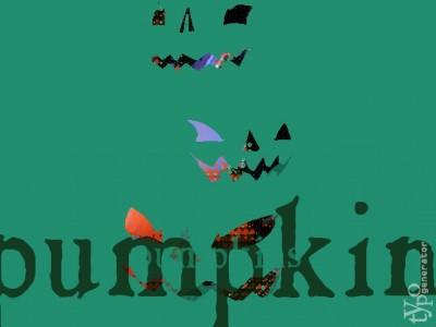 pumpkins4.jpg